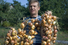 Farmer. This not masquerade. these festoons of the bulbs I keep store on lofts garret. these bulbs I have grown itself. I do not buy onion in shop. my vegetables Royalty Free Stock Photo