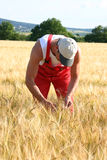 Farmer. Outdoor Royalty Free Stock Images