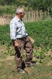 Farmer. Senior farmer, in the fields Stock Photos