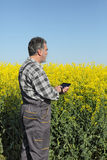 Farmer or agronomist in blossoming rapeseed field Stock Photo