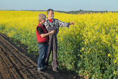 Farmer and agronomist in blossoming rapeseed field Stock Photos