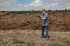 Natural fertilizer, cow dung in field and farmer or agronomist. Farmer or agronomist examining heap of cow dung  in field using tablet to calculate, natural Royalty Free Stock Photo
