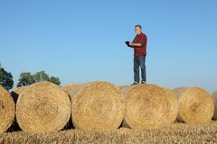 Farmer examining wheat field after harvest using tablet. Farmer or agronomist in wheat field after harvest examining bale, rolled straw, using tablet Stock Image