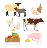 Farmer animals set in cartoon style. Vector illustration of pig, cow, rabbit, sheep, chicken, lamb. Countryside, rural Stock Photography
