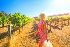 Farmer in Australian Vineyard Royalty Free Stock Photo