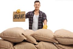 Farmer behind pile of sacks and sign that says organic Stock Photo