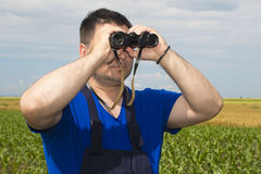 Farmer with binoculars in the field Royalty Free Stock Images
