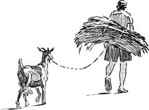Farmer with brushwood and his goat go home Royalty Free Stock Photos