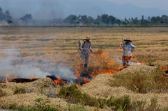 Farmer burning straws Royalty Free Stock Photos