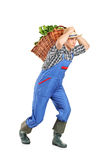 Farmer carrying a basket full with vegetables Stock Images