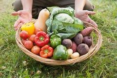 Farmer carrying basket of veg stock photography
