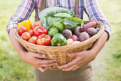 Farmer carrying basket of veg Royalty Free Stock Photos