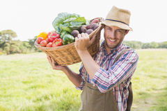 Farmer carrying basket of veg. On a sunny day Stock Photos