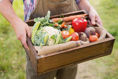 Farmer carrying box of veg Royalty Free Stock Photos