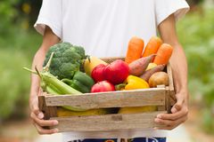 Farmer carrying fresh vegetable and fruits. Just harvest at organic or bio farm Royalty Free Stock Images