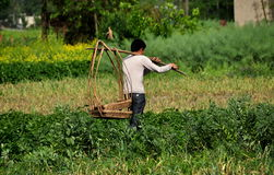 Pengzhou, China: Farmer Carrying Baskets Stock Image