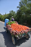 Farmer carrying vegetables on a cart pulled by a horse-Morocco Royalty Free Stock Photo