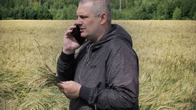 Farmer with cell phone near yellow cereal field stock footage