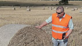 Farmer checking the hay bales stock video footage