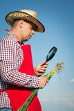 Farmer checking his crops Stock Image