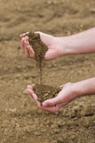 Farmer Checking Soil Quality of Fertile Agricultural Farm Land Royalty Free Stock Photography