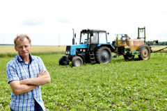 Farmer checking soybean field. The unique technology of growing. Crops. Farmer sitting in the field on a background of wheat and soybeans. Golf bread. Growing Royalty Free Stock Photo