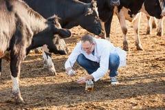 Farmer checks  biological samples Stock Image