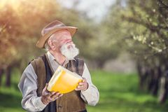Farmer with cheese Royalty Free Stock Image