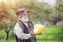 Farmer with cheese Royalty Free Stock Images
