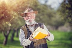Farmer with cheese Stock Image