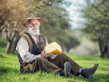 Farmer with cheese Royalty Free Stock Photos