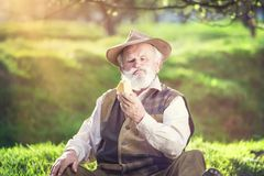 Farmer with cheese Royalty Free Stock Photo