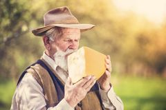 Farmer with cheese Royalty Free Stock Photography