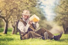 Farmer with cheese. Senior farmer with organic cheese outside in green nature Royalty Free Stock Images