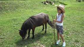 Farmer Child Looking a Grazing Pony Horse, Cowboy Girl Playing, Pasturing 4K stock footage