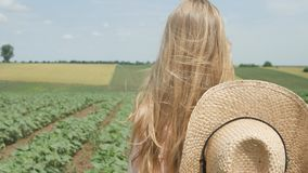 Farmer Child in Sunflower Field, Girl, Kid Studying, Walking in Agrarian Harvest royalty free stock photography