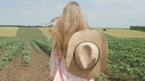 Farmer Child in Sunflower Field, Girl, Kid Studying, Walking in Agrarian Harvest stock image