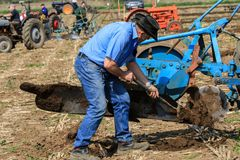 Farmer cleaning mud off plough of old vintage tractors at ploughing match Stock Photography