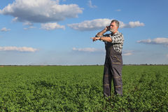 Farmer in clover  field Royalty Free Stock Images