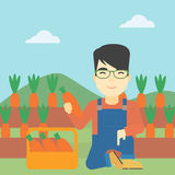 Farmer collecting carrots vector illustration. An asian farmer collecting carrots in basket. Young farmer holding a carrot on the background of field. Vector Royalty Free Stock Photography