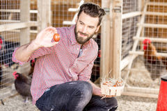 Farmer collecting eggs Royalty Free Stock Photography