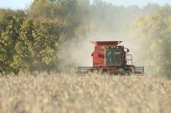 Farmer combining soybeans Stock Photos