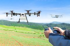 Farmer control agriculture drone fly to sprayed fertilizer plant Stock Photo