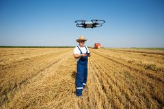 Farmer Control a drone on the wheat field. stock photo