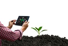 Farmer control tablet technology future tree care and tree stock image