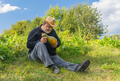 Farmer controlling gourd harvest ripeness sitting on the field edge Royalty Free Stock Photo