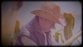 A farmer in a corn field. An elderly man in a straw hat and waistcoat walks through a corn field and checks the harvest. Video archive. Retro camera 8 mm. Old stock video footage