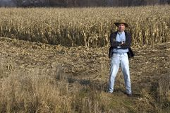 Farmer in Cornfield. Farmer standing in cornfield during harvest time. The corn is allowed to dry and then used as silage/feed for cattle and dairy cows during Royalty Free Stock Image