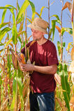 Farmer in the cornfield Royalty Free Stock Image