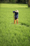 Farmer in the cultivated land Royalty Free Stock Photos